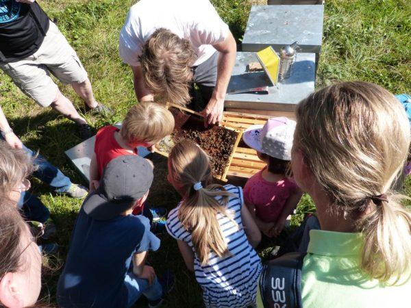 Bienenpaten -Tag